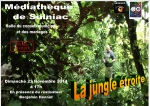 La Jungle étroite - Affiche.jpg
